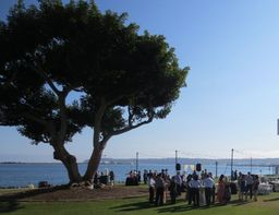 Beautiful and quiet Harbor Island Park, overlooking the harbor and bay, makes for a truly memorable outdoor reception.